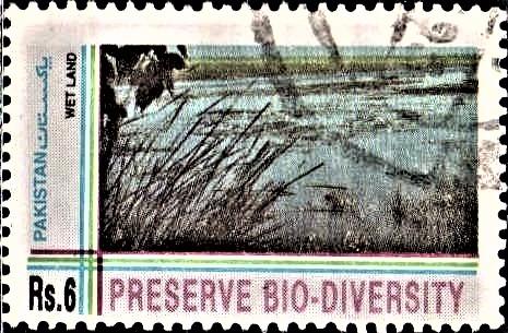Preserve Eco-Diversity