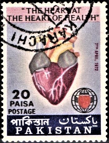Human Heart : International Society of Cardiology