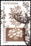 India Stamp 1985 pic