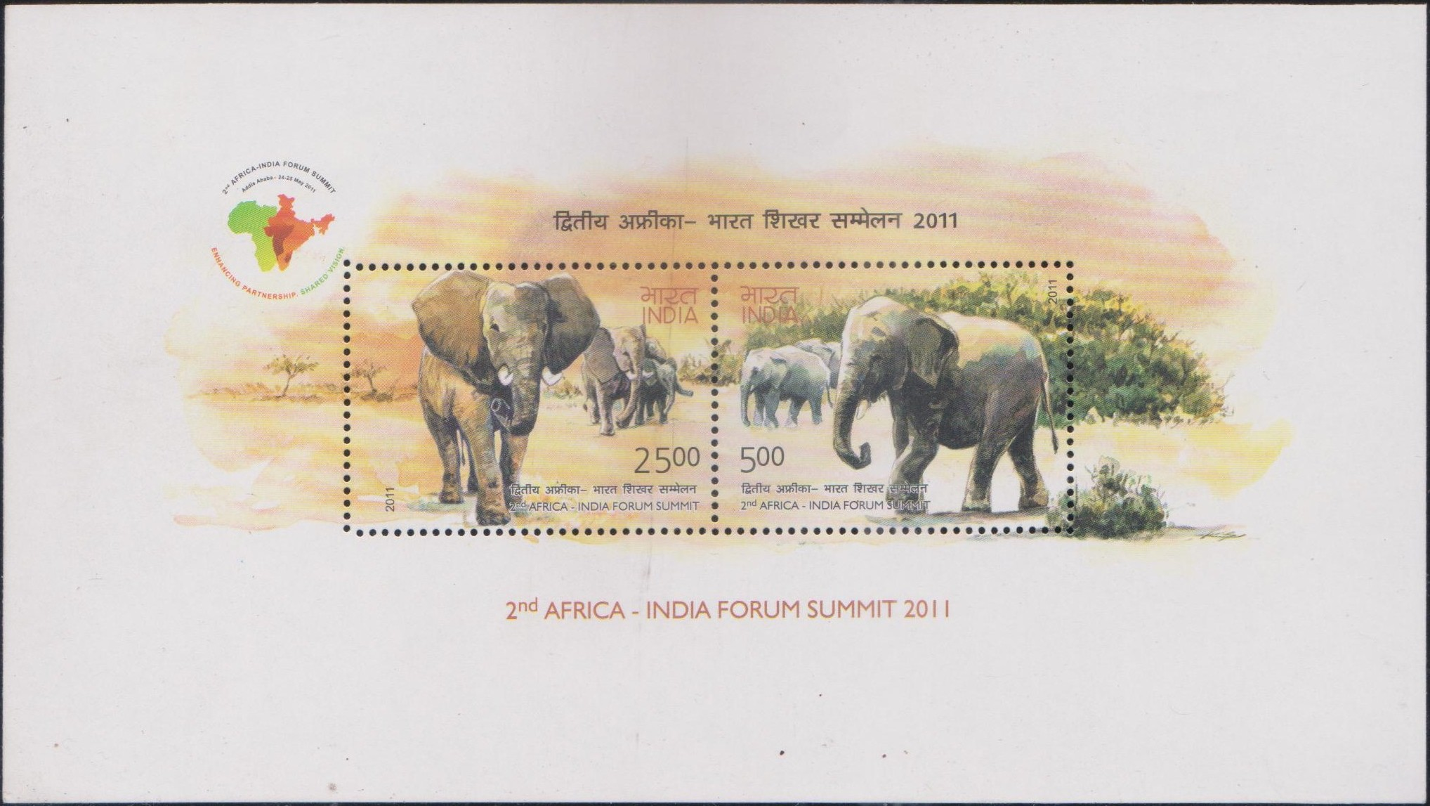 African Elephant (Loxodonta) and Indian Elephant (Elephas maximus indicus)