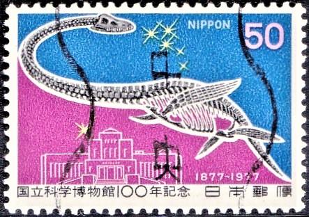 Dinosaur (Tokyo Science Museum) : Kokuritsu Kagaku Hakubutsukan