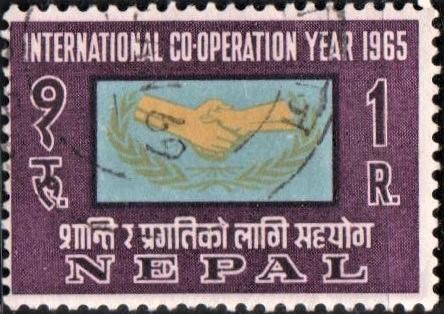 International Cooperation Year : ICY Emblem