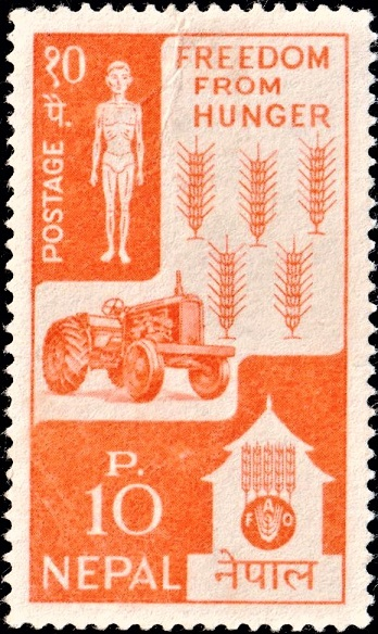 Man, Tractor and Wheat